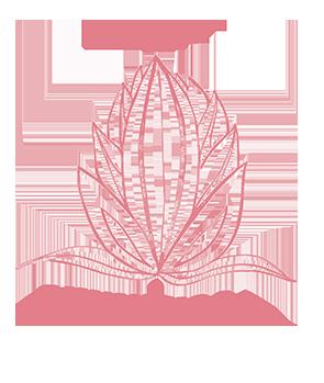 Bhumi Yoga